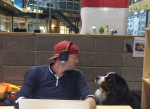 "t Crispin Porter + Bogusky in Gunbarrel, Tyler Gonerka gets ""the death stare"" from his dog, Abe. (photo courtesy cp+b)"
